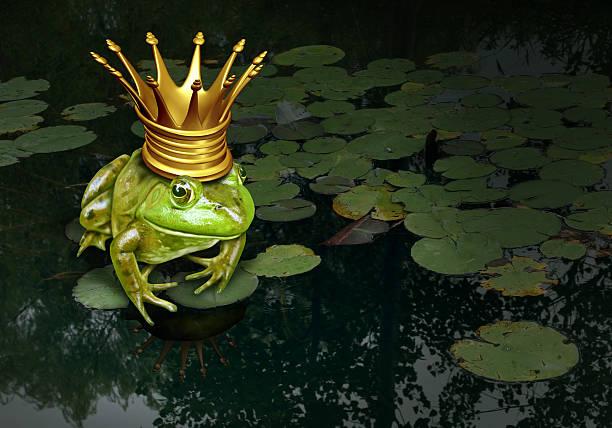 Hefurðu heyrt um froskinn sem breyttist í prins?